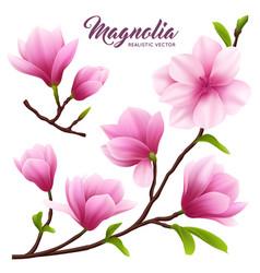 Realistic magnolia flower icon set vector