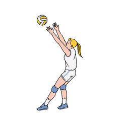 volleyball or basketball female player sketch vector image