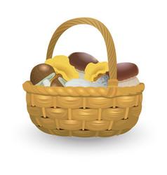 Wicker basket full of orange cap boletus vector