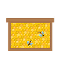 honeycomb in wooden frame icon flat style vector image vector image