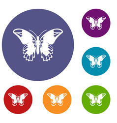 Admiral butterfly icons set vector