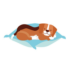 beagle dog sleeping on cushion vector image