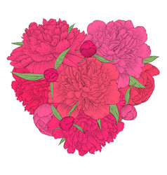 beautiful heart decorated flowers peony vector image