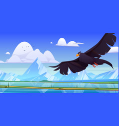 Black eagle falcon or hawk with outspread wings vector