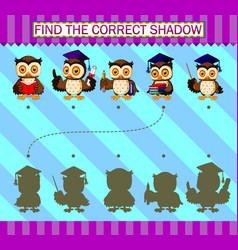 Find correct shadow cartoon cute owl vector