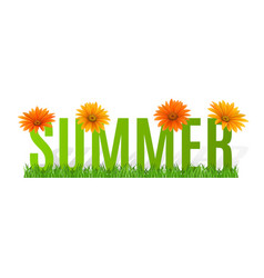 Summer typographic banner with flowers for design vector