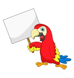 Macaw bird cartoon with blank sign vector image vector image