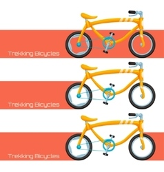 Trekking Bicycles Two vector image