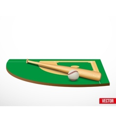Symbol of a baseball game and field vector image vector image
