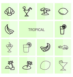 14 tropical icons vector