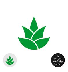 Aloe vera plant isolated icon leaves logo vector