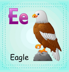 animals alphabet e is for eagle vector image