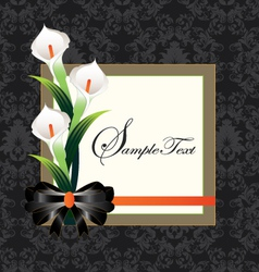 Calla lilies on black damask background vector