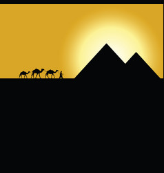 gypt pyramids with camel caravan on sunset vector image