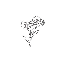 One single line drawing beauty fresh canna for vector