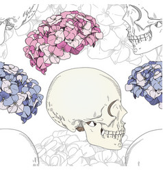 seamless patterns with female skulls vector image