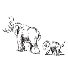Sketch of an elephant with cub vector image