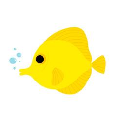 Yellow tang fish animal cartoon character vector