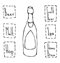 craft beer bottle doodle style sketch hand drawn vector image