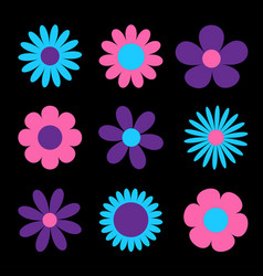 Daisy chamomile cute big flower plant collection vector