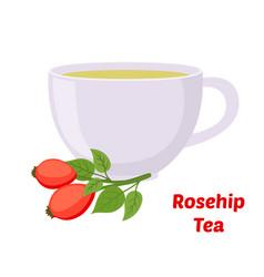 rosehip briar tea cup cartoon flat style vector image