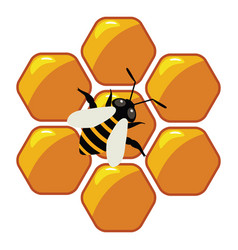 symbol of working bee on honeycells vector image