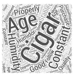 How To Properly Age A Cigar Word Cloud Concept vector image vector image