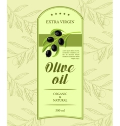 Creative label for olive oil with olive branch vector image