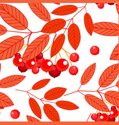 seamless autumn pattern with red orange ashberry vector image