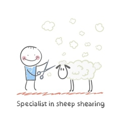 Specialist sheep shearing vector image