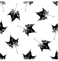 Black and white seamless pattern of maple leaves vector