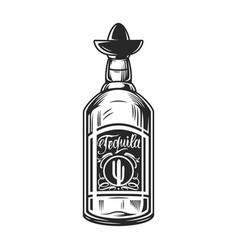bottle tequila concept vector image