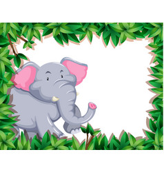 elephant in nature frame vector image
