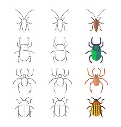 line and flat beetles cockroach and spider vector image