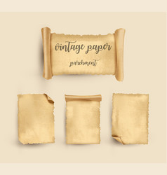 Parchment vintage old paper vector
