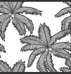 Seamless pattern exotic palm tree with coconuts vector