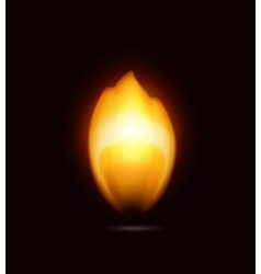 Flame on black icon vector image