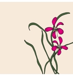 Chinese element drawing orchid vector image vector image