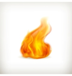 Flame icon vector image