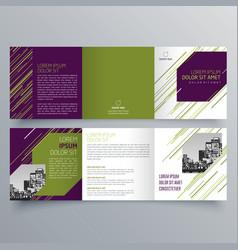 brochure design 858 vector image