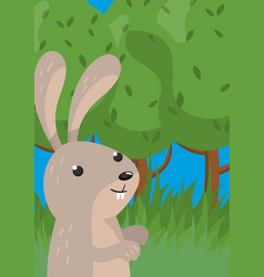 cute hare with woodland animal vector image