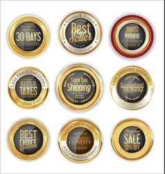 luxury gold and gray badges collection vector image