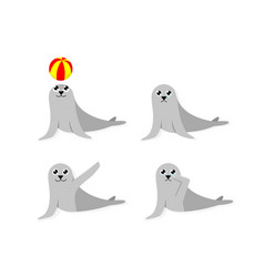 set cartoon seal isolated on white vector image