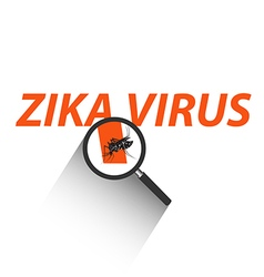 Magnifying glass on Zika virus text with Mosquito vector