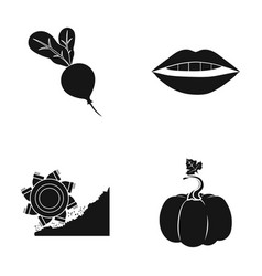 Rybinsk pumpkin and other web icon in black style vector
