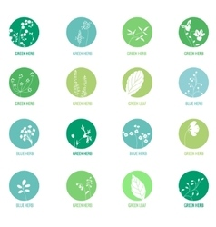 Set with different icons with herbs vector image