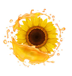 sunflower oil realistic splash vector image