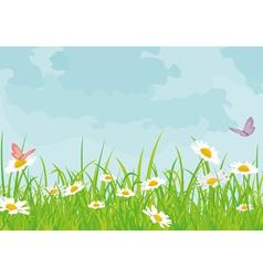 Daisy field vector