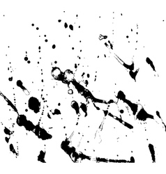black and white texture vector image