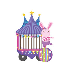 cute circus rabbit with layer and kiosk vector image